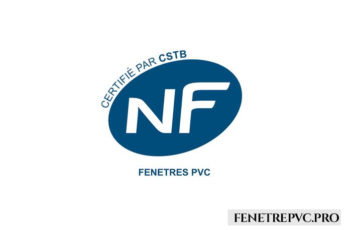 nf logo bleu blanc