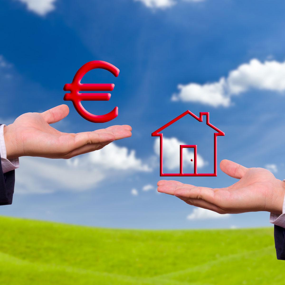 symbole euros pelouse maison